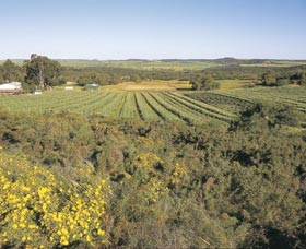 Chapman Valley Scenic Drive - Accommodation BNB