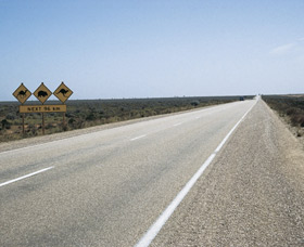 Eyre Highway - Accommodation BNB