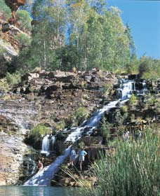 Fortescue Falls - Accommodation BNB