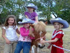 Amberainbow Pony Rides - Accommodation BNB