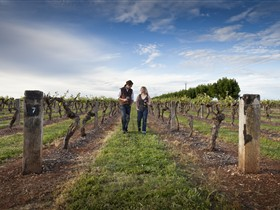 Coonawarra Wineries Walking Trail - Accommodation BNB