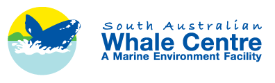 South Australian Whale Centre - Accommodation BNB