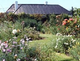 Rosedown Gardens - Accommodation BNB