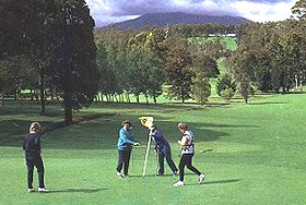 Deloraine Golf Course - Accommodation BNB
