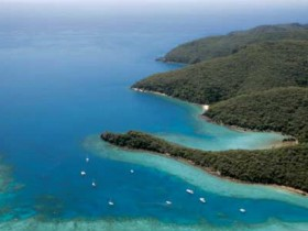 Butterfly Bay - Hook Island - Accommodation BNB
