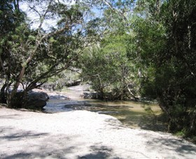 Davies Creek National Park and Dinden National Park - Accommodation BNB
