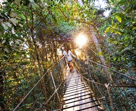 Tree Top Walkway - Accommodation BNB