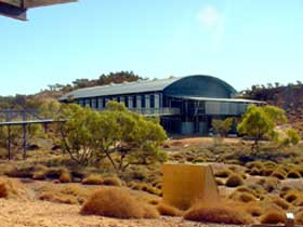 Dinosaur Stampede at Lark Quarry Conservation Park - Accommodation BNB