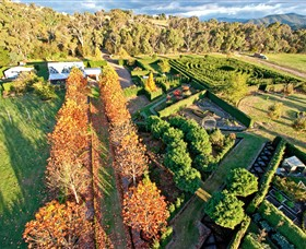 High Country Maze - Accommodation BNB