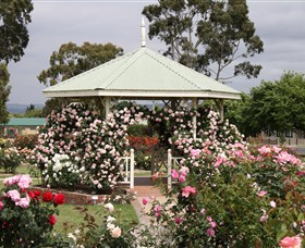 Morwell Centenary Rose Garden - Accommodation BNB