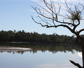 North Coast Holiday Parks Boambee Creek Reserve - Accommodation BNB