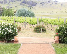Brindabella Hills Winery - Accommodation BNB