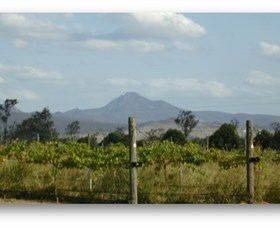 Ironbark Ridge Vineyard - Accommodation BNB