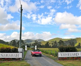Sarabah Estate Vineyard - Accommodation BNB