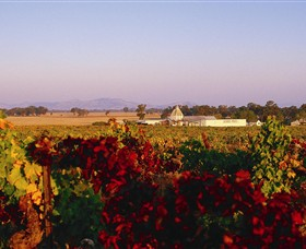 Morris Wines - Accommodation BNB