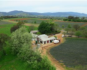 Schmidts Strawberry Winery - Accommodation BNB