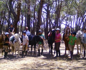 Bellarine Horse Riding Centre - Accommodation BNB
