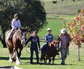 Bathurst Farm Experience - Accommodation BNB