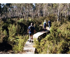 Hume and Hovell Walking Track - Henry Angel Trackhead - Accommodation BNB