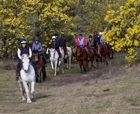 Burnelee Excursions on Horseback - Accommodation BNB