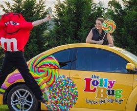 The Lolly Bug - Accommodation BNB