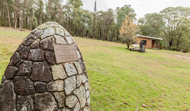 Major Clews Hut walking track - Accommodation BNB