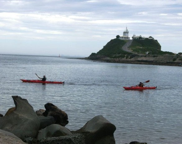 Newcastle Kayak Tours - Accommodation BNB