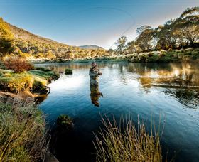 Fly Fishing Tumut - Accommodation BNB