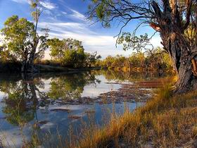 Murray River National Park - Accommodation BNB
