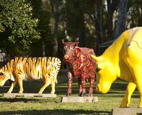 Greater Shepparton's Moooving Art - Accommodation BNB