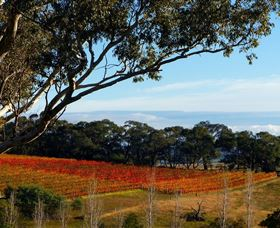Bloodwood Estate - Accommodation BNB