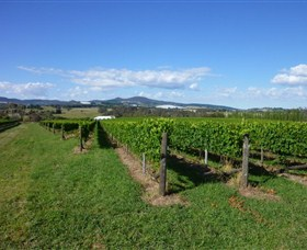 Hedberg Hill Wines - Accommodation BNB