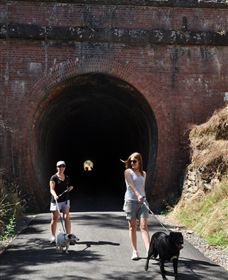 Cheviot Tunnel - Accommodation BNB