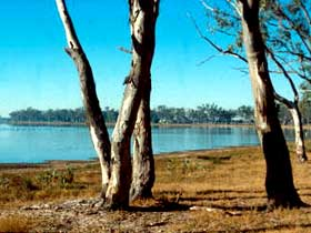 Lake Broadwater Conservation Park - Accommodation BNB