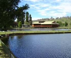 Gaden Trout Hatchery - Accommodation BNB