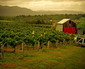 Around Hermitage Wine and Food Trail Hunter Valley - Accommodation BNB