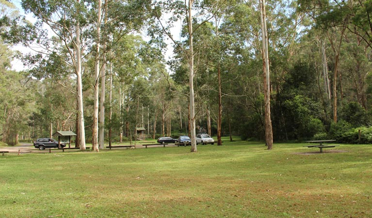 Mill Creek picnic area - Accommodation BNB