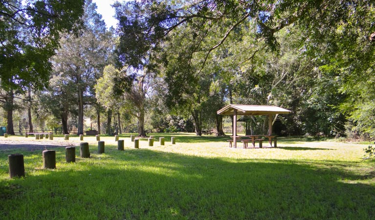 Moore Park picnic area - Accommodation BNB