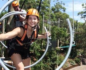 Wild Ropes at Taronga Zoo - Accommodation BNB