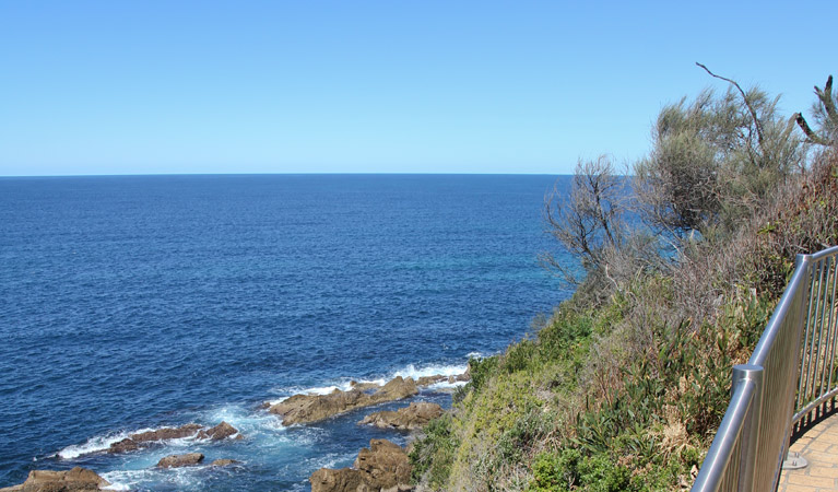 Moruya Heads lookout - Accommodation BNB