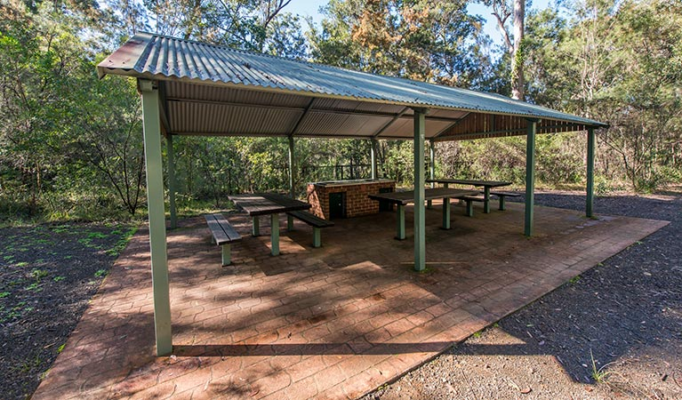 Brimbin picnic area - Accommodation BNB