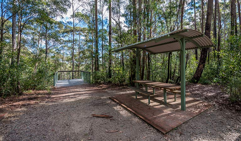 Big Nellie lookout and picnic area - Accommodation BNB