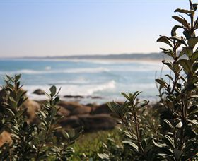 Cape Conran Coastal Park - Accommodation BNB