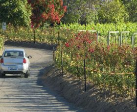 Cassegrain Wines - Accommodation BNB