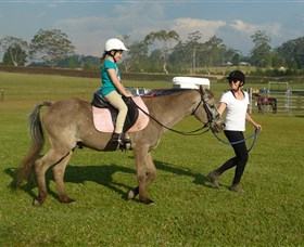 Port Macquarie Horse Riding Centre - Accommodation BNB