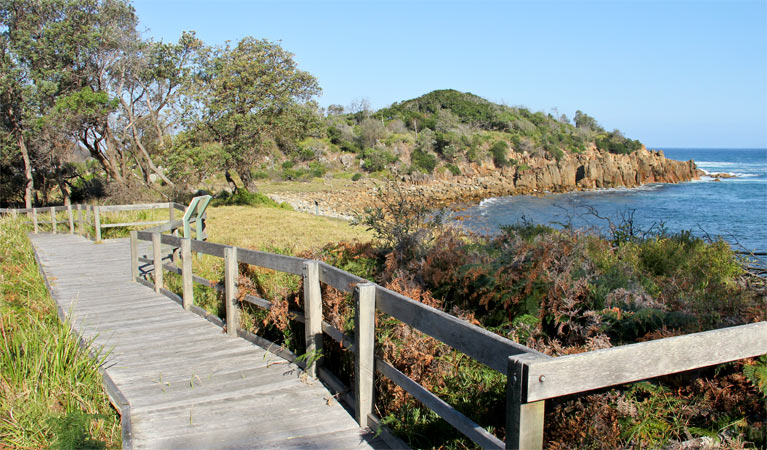 Mimosa Rocks walking track