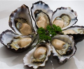 Tathra Oysters - Accommodation BNB