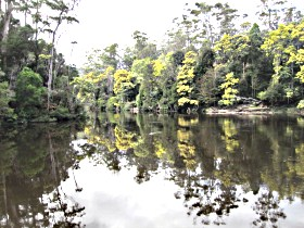 Arthur River - Accommodation BNB