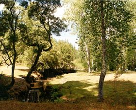 Oldina Picnic Area - Accommodation BNB
