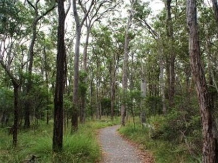 Caboolture Regional Environment Education Centre - Walking Trails - Accommodation BNB